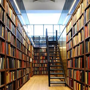 Библиотеки Сольцов