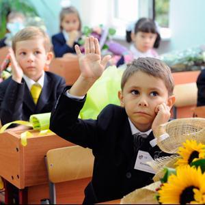 Школы Сольцов